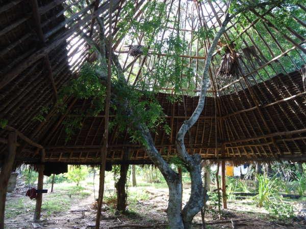 tree dorm construction at distant relatives kilifi
